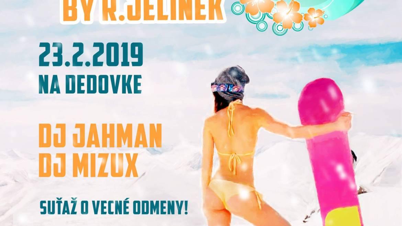 23. 2. 2019<br>Havajská lyžovačka v plavkách s R. Jelínkom