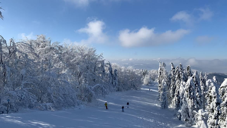 Vyhrajte denný skipas do Snowparadise!